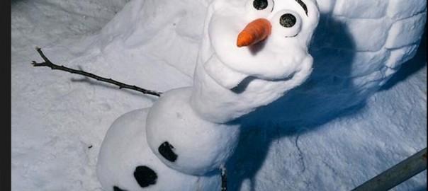 【海外でも話題】日本人が作ったハイクオリティな雪だるまたち17選