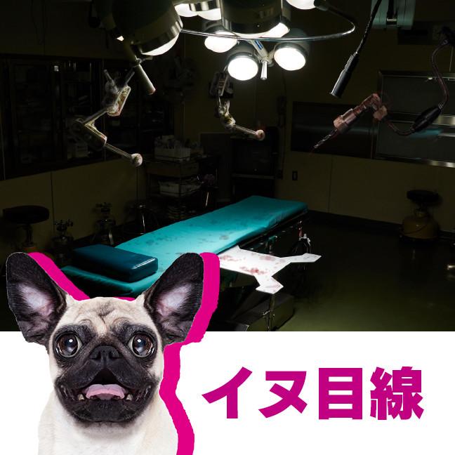 10_動物病院→刑務所_2