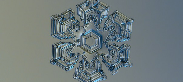 ミクロの世界。雪の結晶が自然の物とは思えないほど美しい