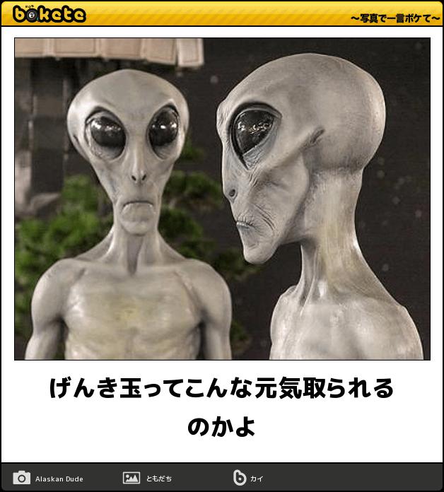 1 (11) (1)