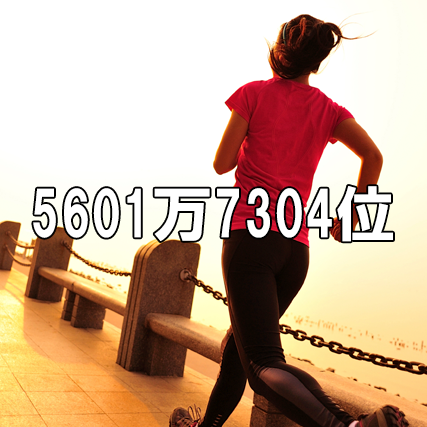 56017304