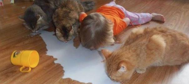 わんにゃんがおー!自分を動物だと思っている子供たち