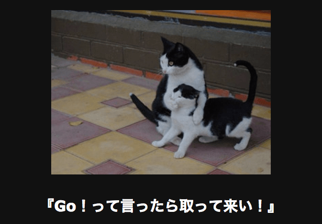 ネコを止めるネコ