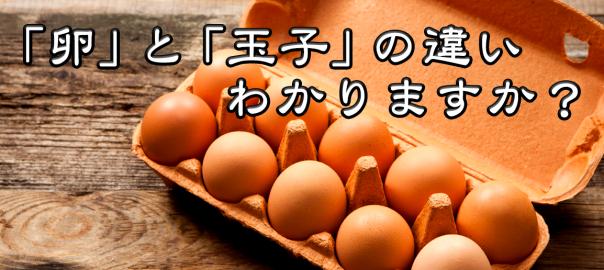 9割の人が知らない!?「玉子」と「卵」の違いを説明できますか?
