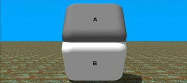 【目の錯覚まとめ】2面の真ん中を指で隠すと同じ色になる?(9選)