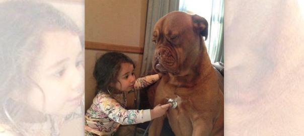 【最高の遊び相手】子供に仕方なく付き合う犬たち