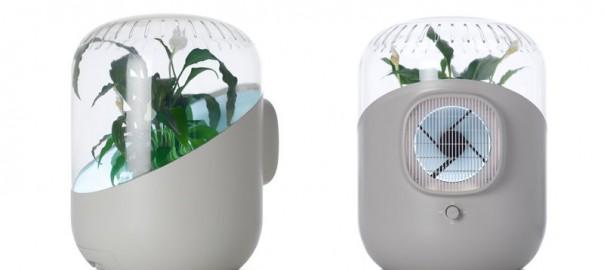 フィルター交換不要のナチュラル空気清浄器 「アンドレア」