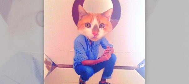 【5秒でできる】ネコをイケメンにする方法