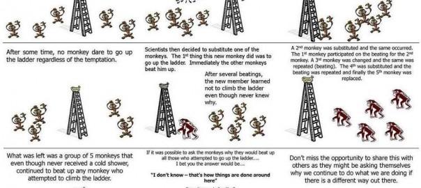 【5匹の猿に学ぶ】社会規則の作られ方の話