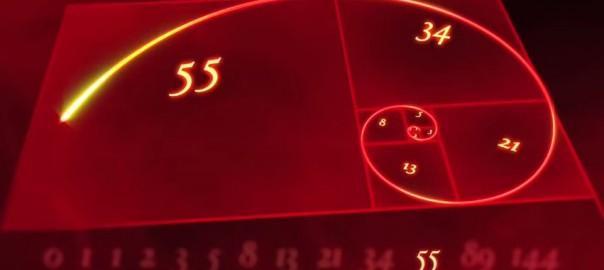 自然界に組み込まれた謎の数列「フィボナッチ数列」が神秘的 (3:43)