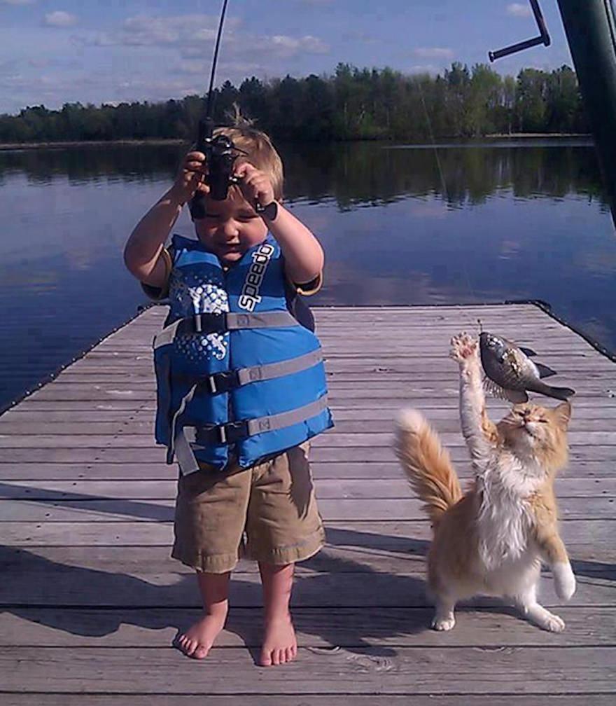 魚と食べようとするネコ