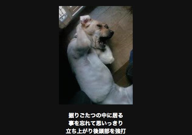 頭を抱える犬