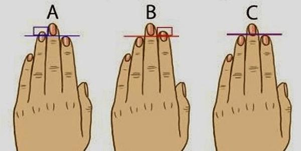 指の長さでわかる性格診断の画像