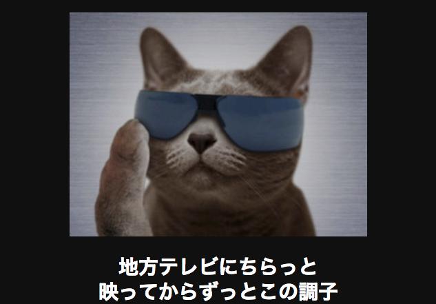 17140 ネコ