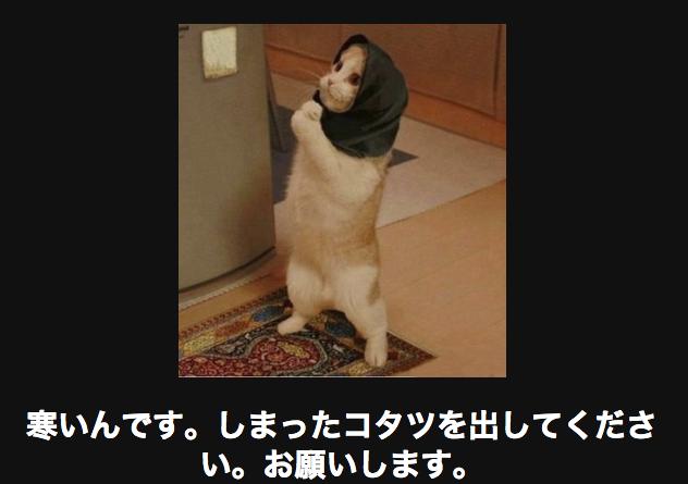 15071 ネコ