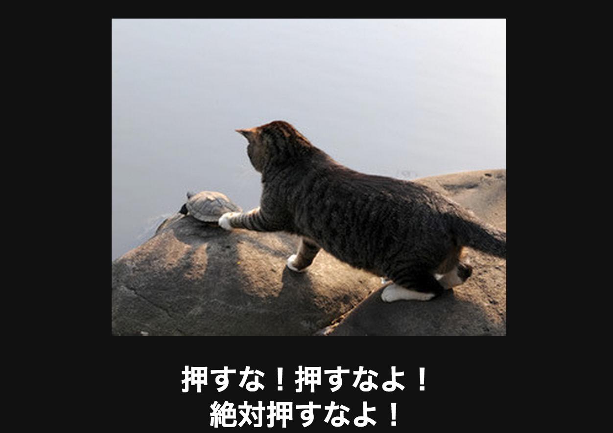 スクリーンショット 2015-05-30 20.53.57