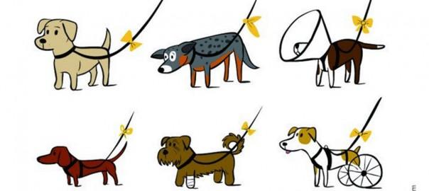 あなたは知っていた?黄色いリボンの犬はそっとしよう「イエロードッグプロジェクト」