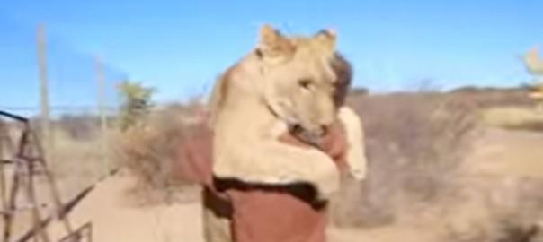 「来てくれるって信じてた」命の恩人と感動の再会を果たしたライオン