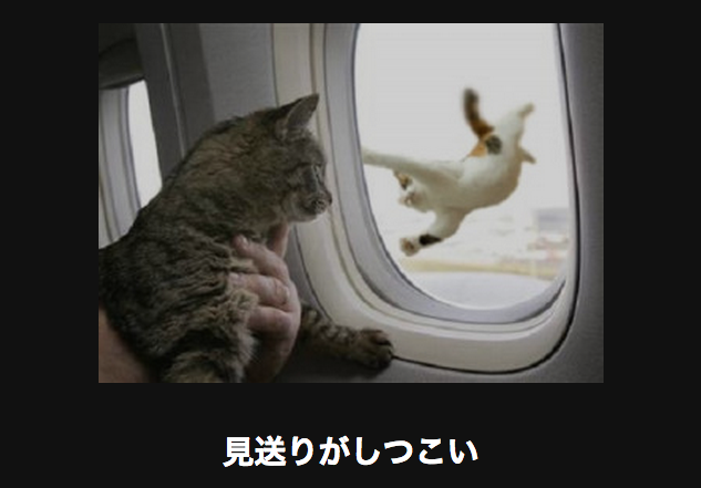 飛行機の見送り アメーバ大喜利