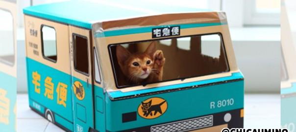30分で誰でも作れる!ネコが大喜びする「ミニクロネコヤマト」の作り方(画像15枚)