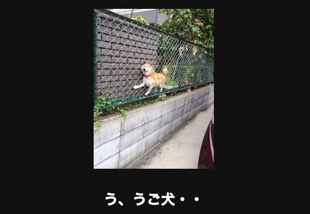 スクリーンショット 2015-06-09 16.51.11