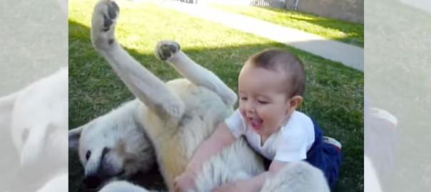 微笑ましい♡ 赤ちゃんと仲睦まじく戯れる秋田犬にほっこり