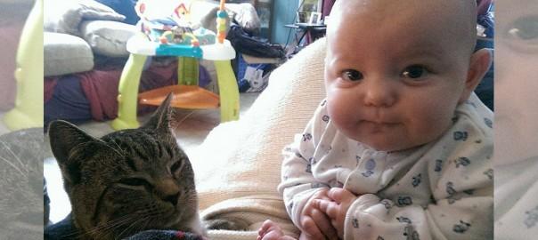 【赤ちゃんと野良猫の素敵コンビ】妊娠中に拾ったネコが生まれた娘の大親友になった
