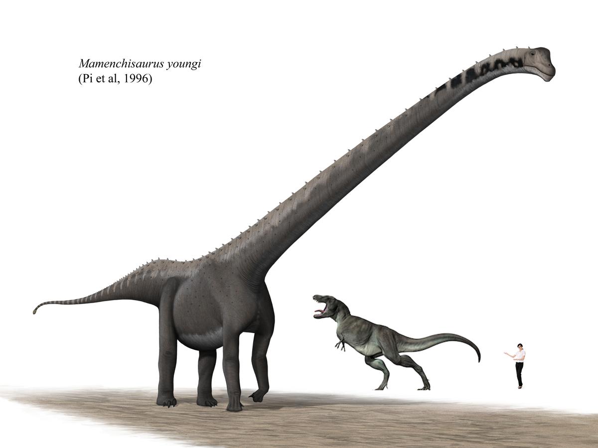 マメンチサウルスの大きさ
