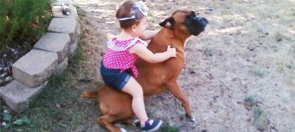 【ベビーシッター不要論】子供の世話は犬に任せるべきだとわかる写真14選