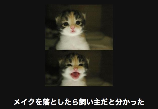 アメーバ大喜利の「メイクを落としたら飼い主だと分かった」の画像