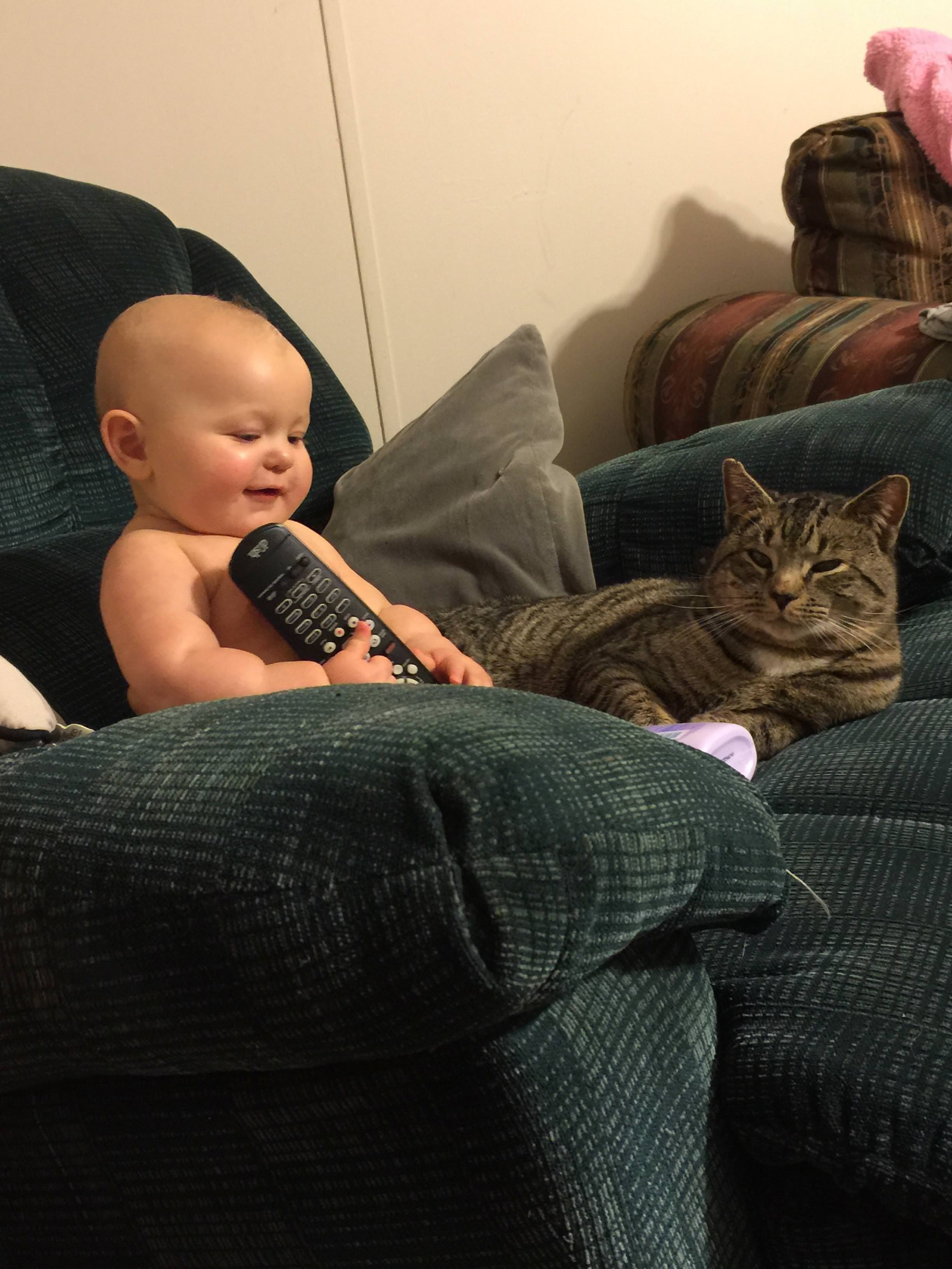 仲の良い猫と赤ちゃん