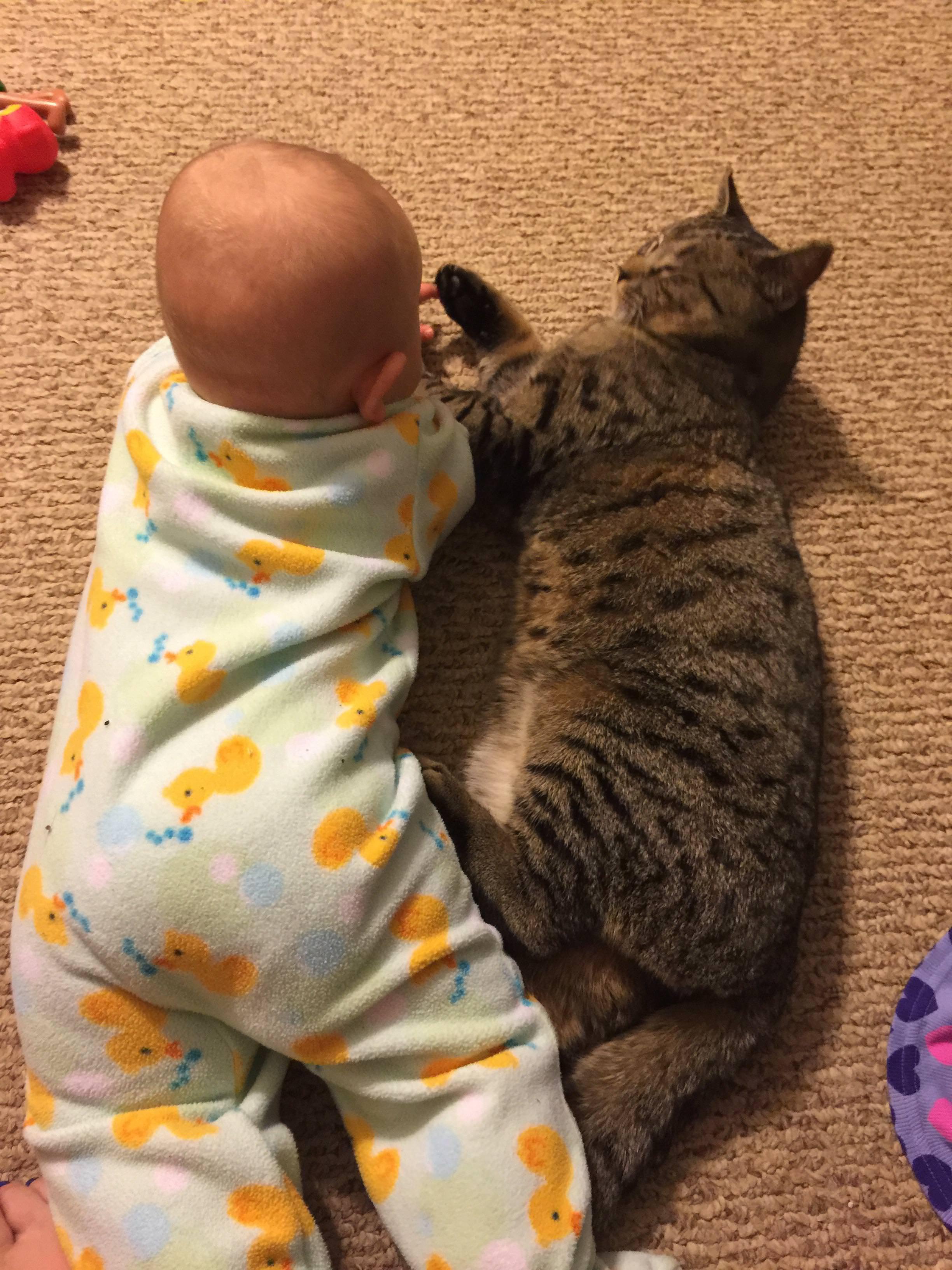 一緒に寝転がる猫と赤ちゃん
