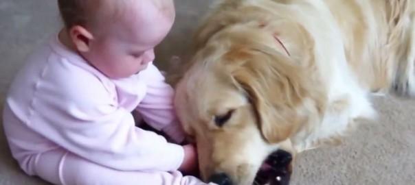 可愛すぎる争奪戦!赤ちゃんとワンコの骨をめぐるバトルが微笑ましい