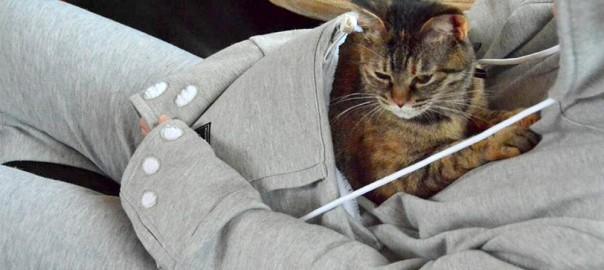 猫好き全員集合!すっぽり猫が収まるパーカーが、喉から肉球が出るほどキュート