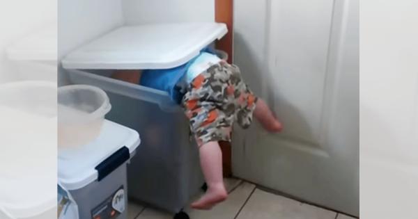 全てはワンコのために!赤ちゃんが大きなバケツに体を突っ込む
