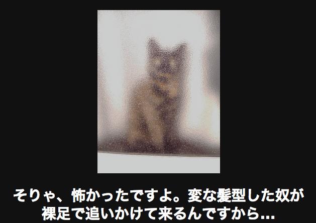2581923_1-11-1