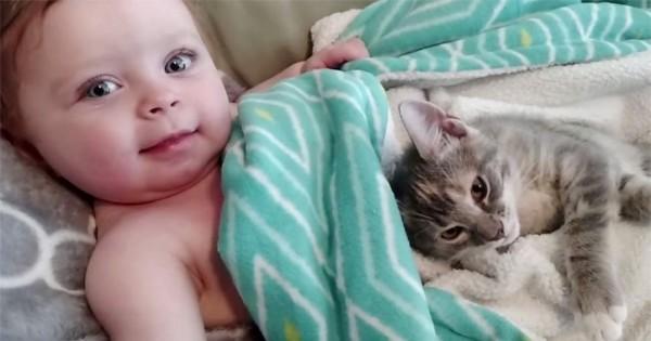 これぞ天使!仲良く眠っていた赤ちゃんと子猫が目覚める姿が可愛くて悶絶