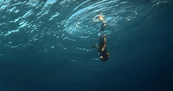 海中を走る?! ビヨンセの歌声が響くMVが幻想的すぎて息が止まりそう
