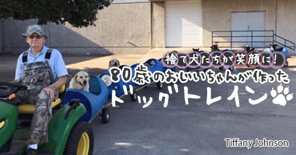 捨て犬たちが笑顔に!80歳のおじいちゃんが作った「ドッグトレイン」にワンコ大歓喜
