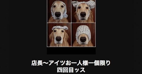 【キケン注意】静かな場所では読んではいけない犬の傑作大喜利18選