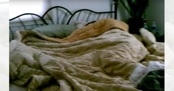 まさか旦那が浮気?! 見知らぬ誰かと眠る夫の布団をめくると衝撃の光景が!