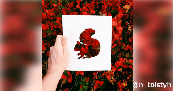 【自然の風景を利用】色鮮やかな切り絵アートが動物たちに命を吹き込む