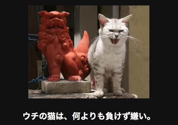 スクリーンショット 2015-10-14 16.37.37