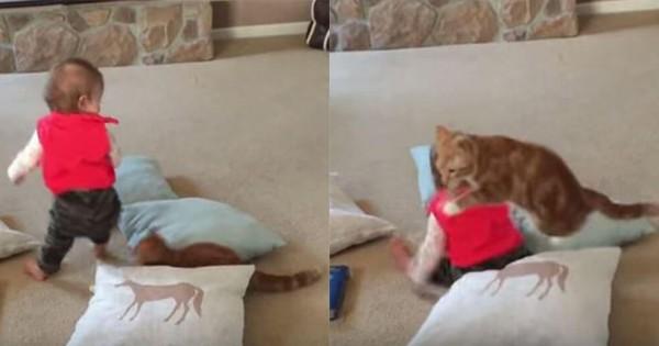 にゃんこ危機一髪!赤ちゃんに踏まれそうだった猫の無重力感がヤバい