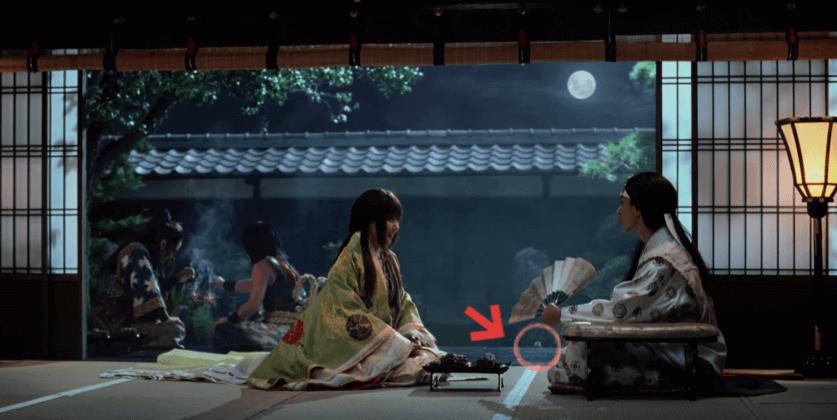かぐや姫の帰省 (1)