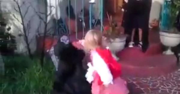 幼女最強!ハロウィンで兄を怯えさせたお化けを拳でK.Oした妹がイケメンすぎる