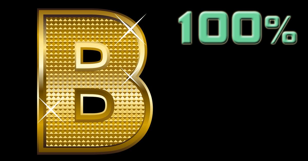 B型100