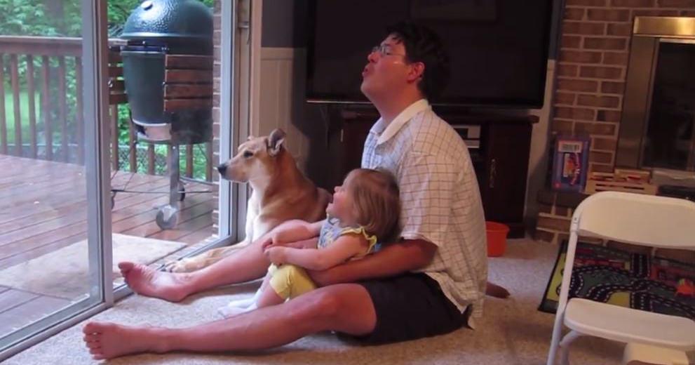 犬 遠吠え練習1