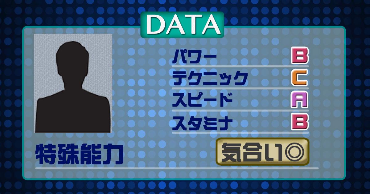 データ13