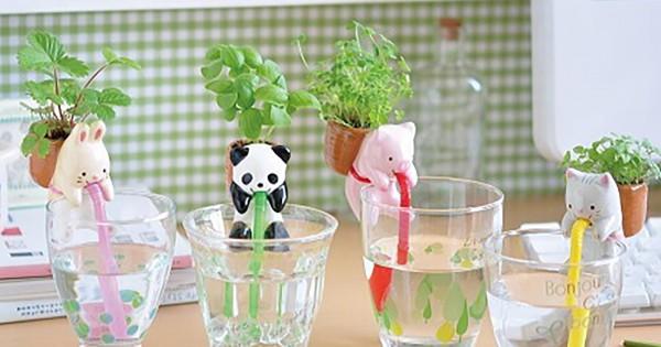 【これは欲しい】水をストローでゴクゴク!植物を育てる動物たちが超可愛い